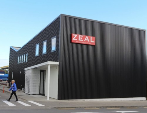 ZEAL – The Home of Young Creatives