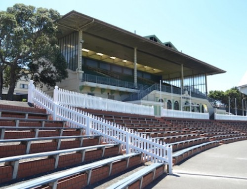 Museum Stand -Basin Reserve